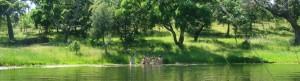 Estanque en Narayana
