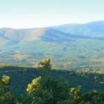 Casa de reposo | Casa Rural de la Sierra de gata